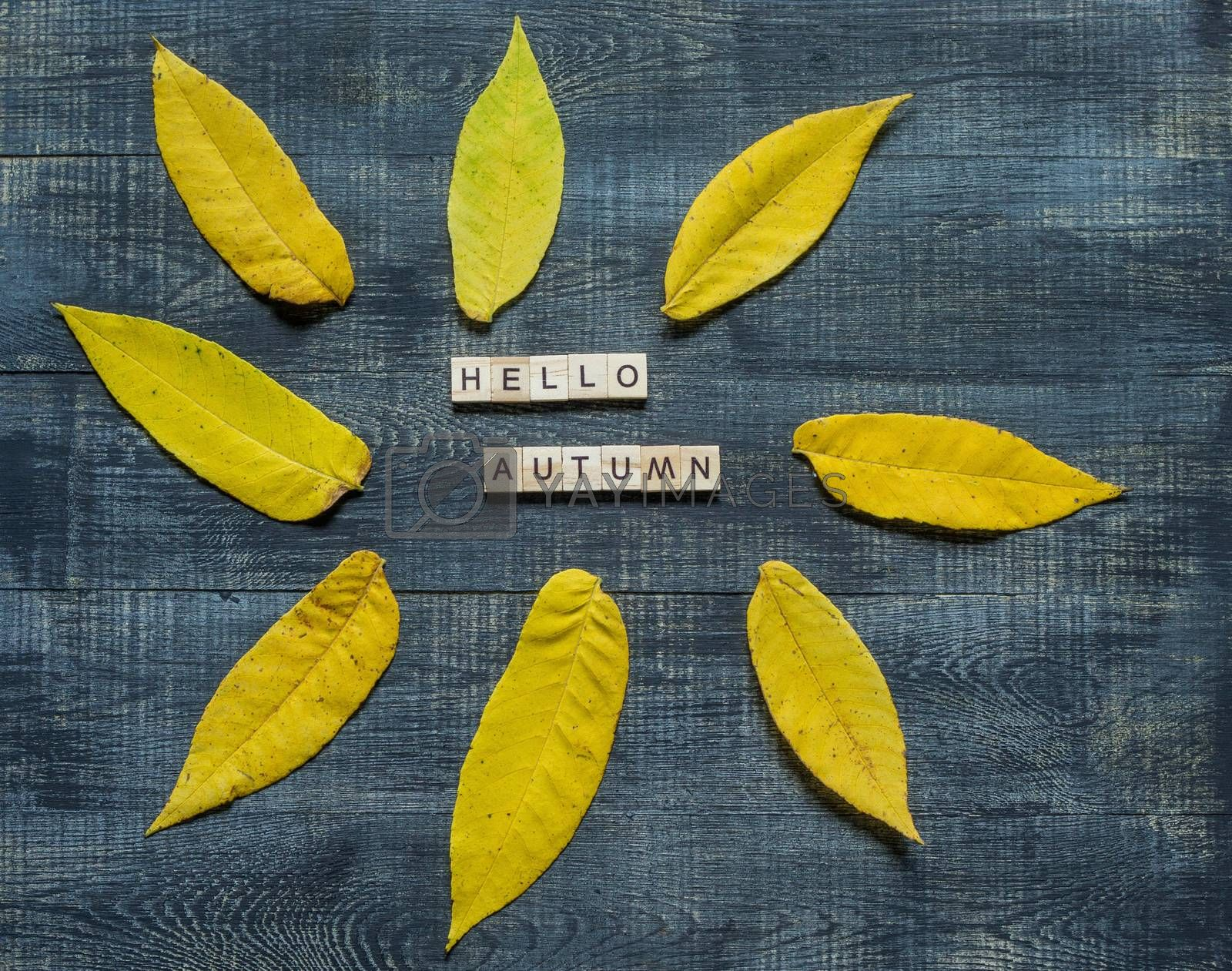 Autumn flat lay with multicolored fallen leaves and hello autumn lettering on wooden background