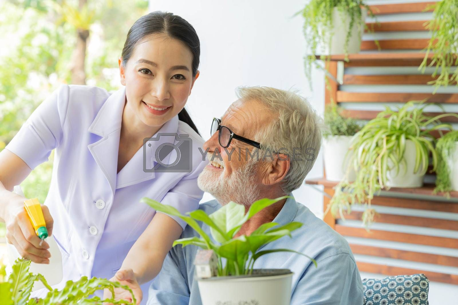 Senior retirement man and nurse are watering a small plant while relax at home