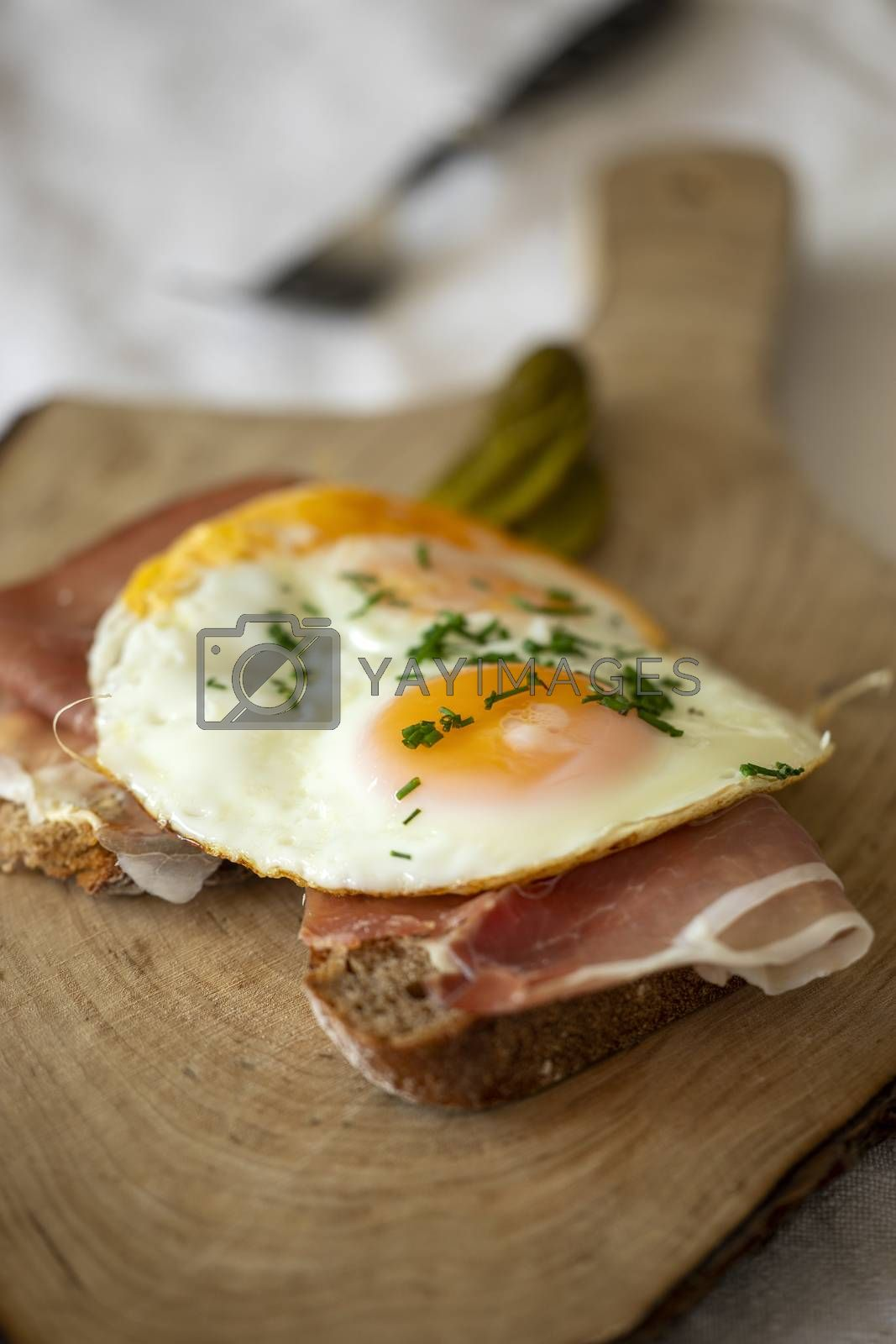 eggs sunny side up on rye bread
