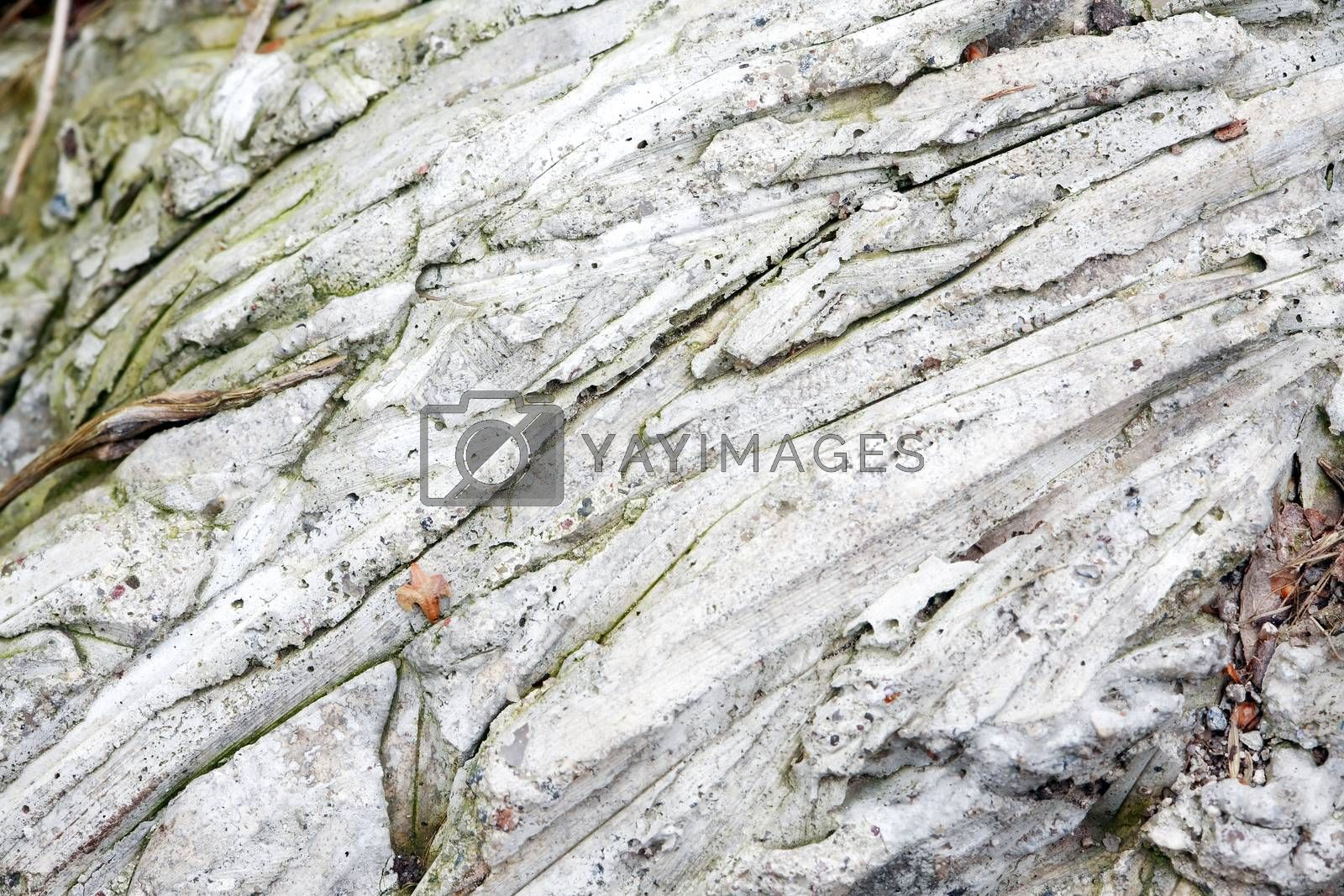 Royalty free image of Stones Gray Background by kvkirillov