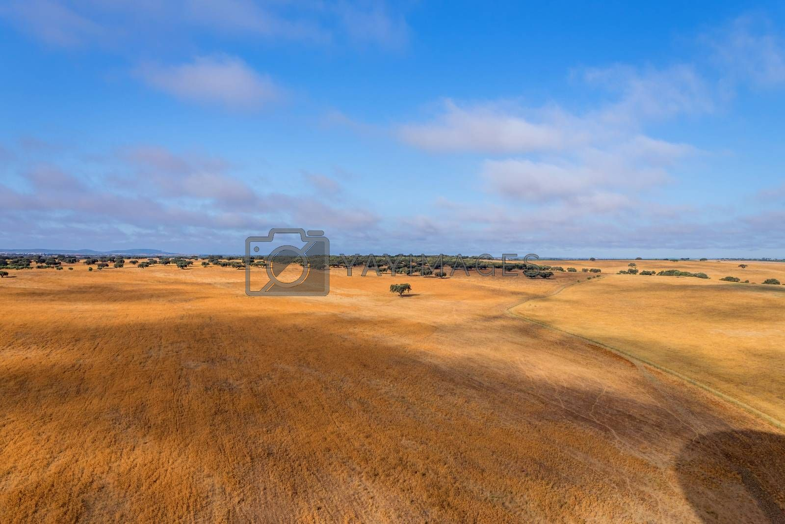 Royalty free image of Alentejo from balloon by zittto