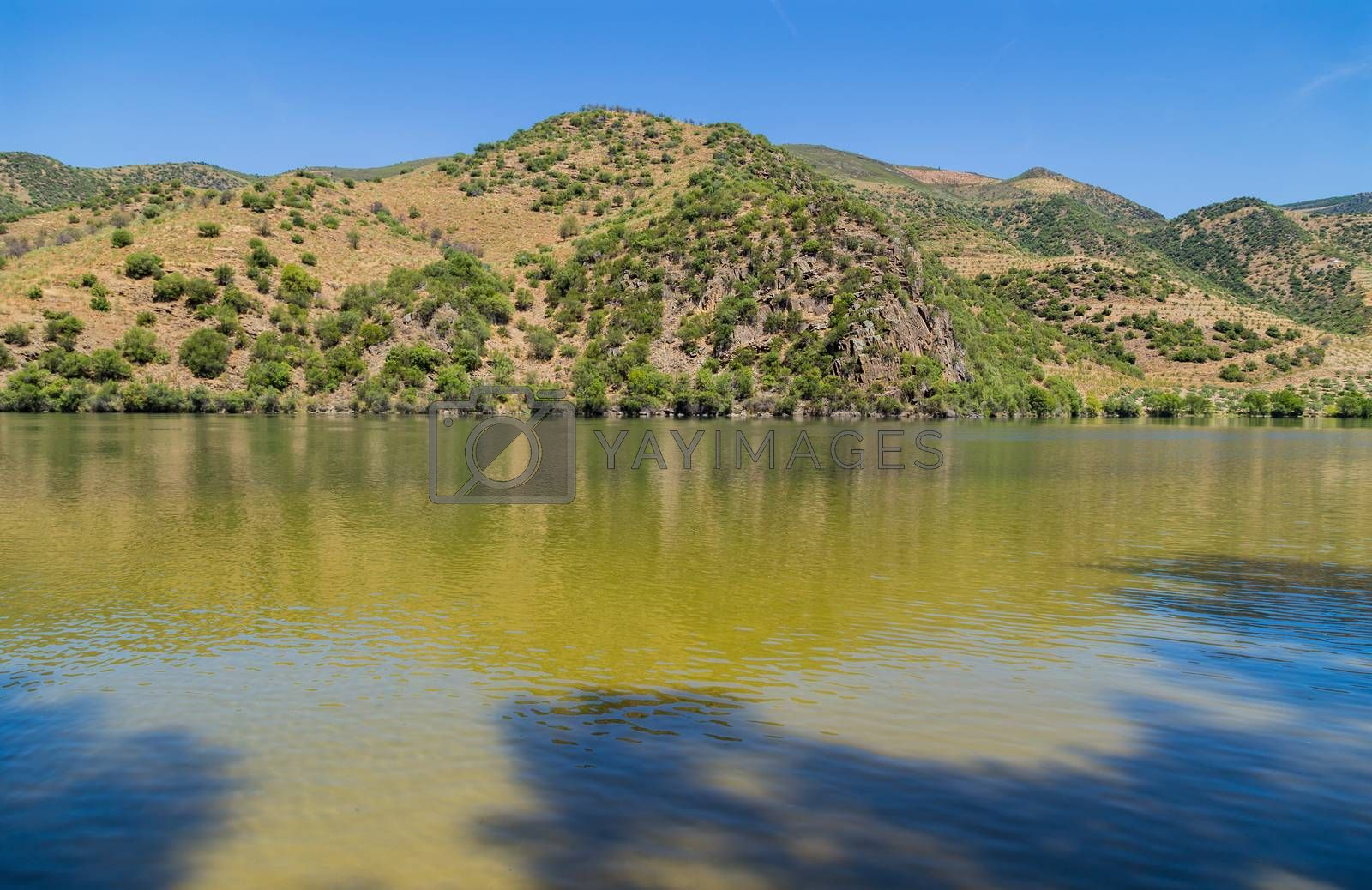Royalty free image of Scenic view of the Douro Valley and river by zittto