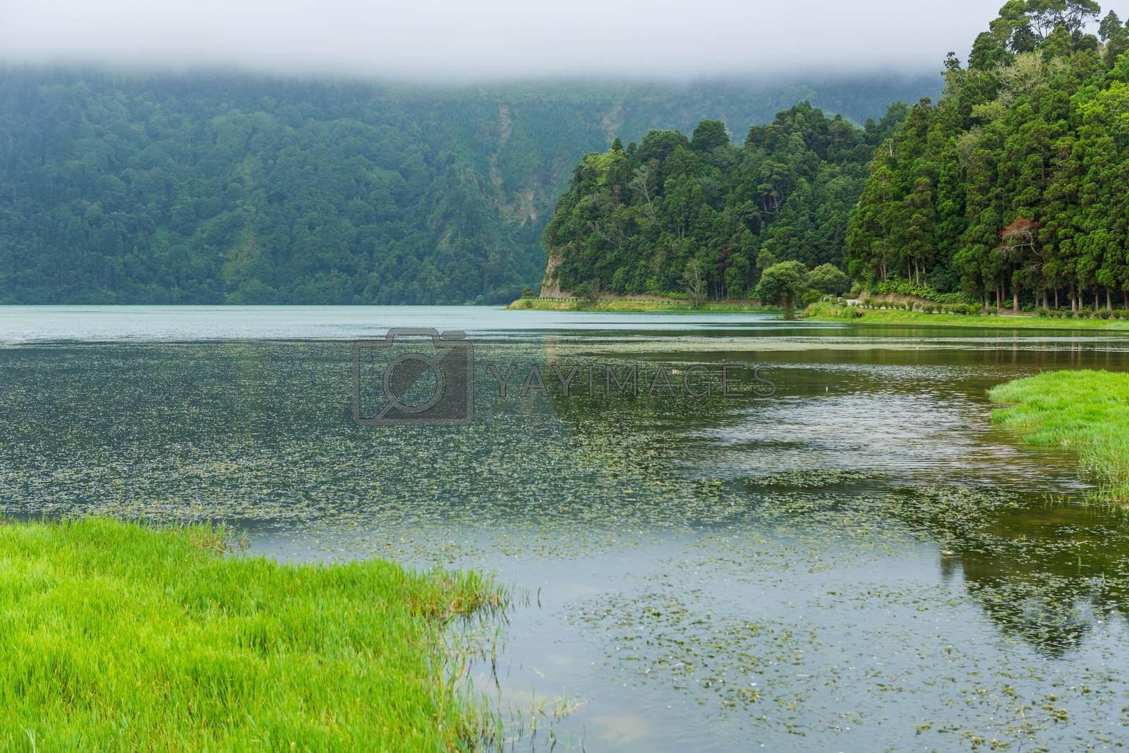 View of the Lake of Sete Cidades in the fog, a volcanic crater lake on Sao Miguel island, Azores, Portugal