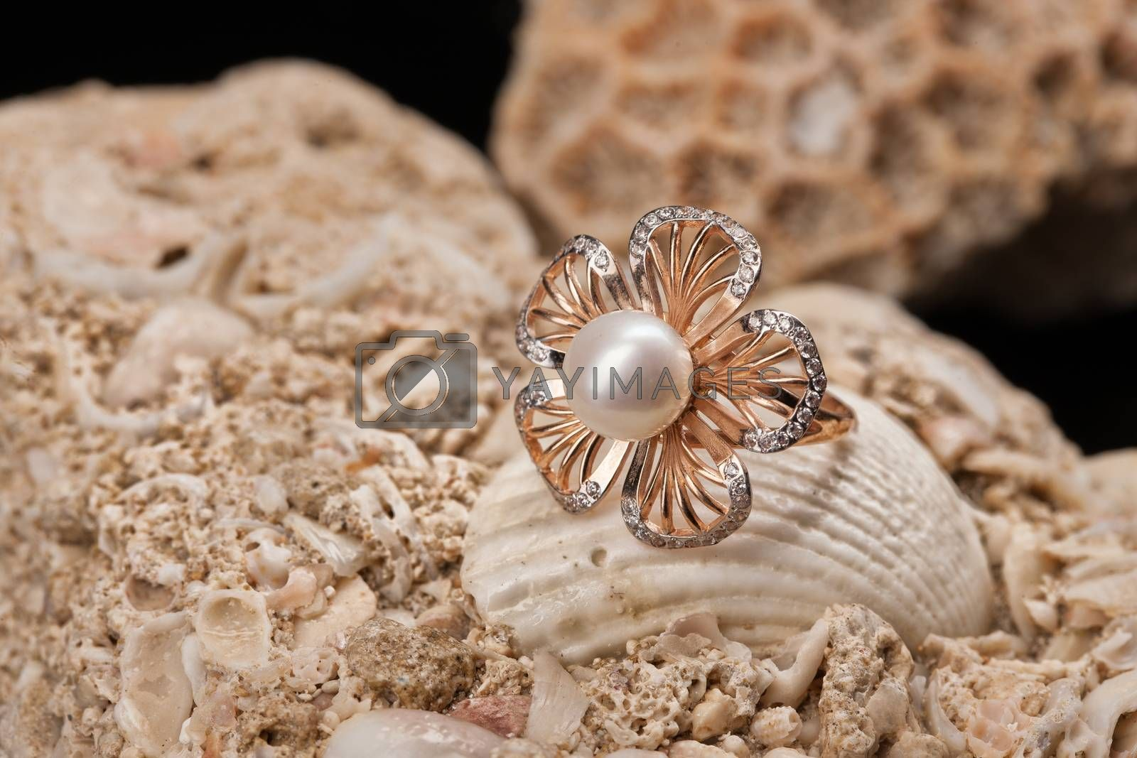 Golden ring with pearl and seashell on a stone background