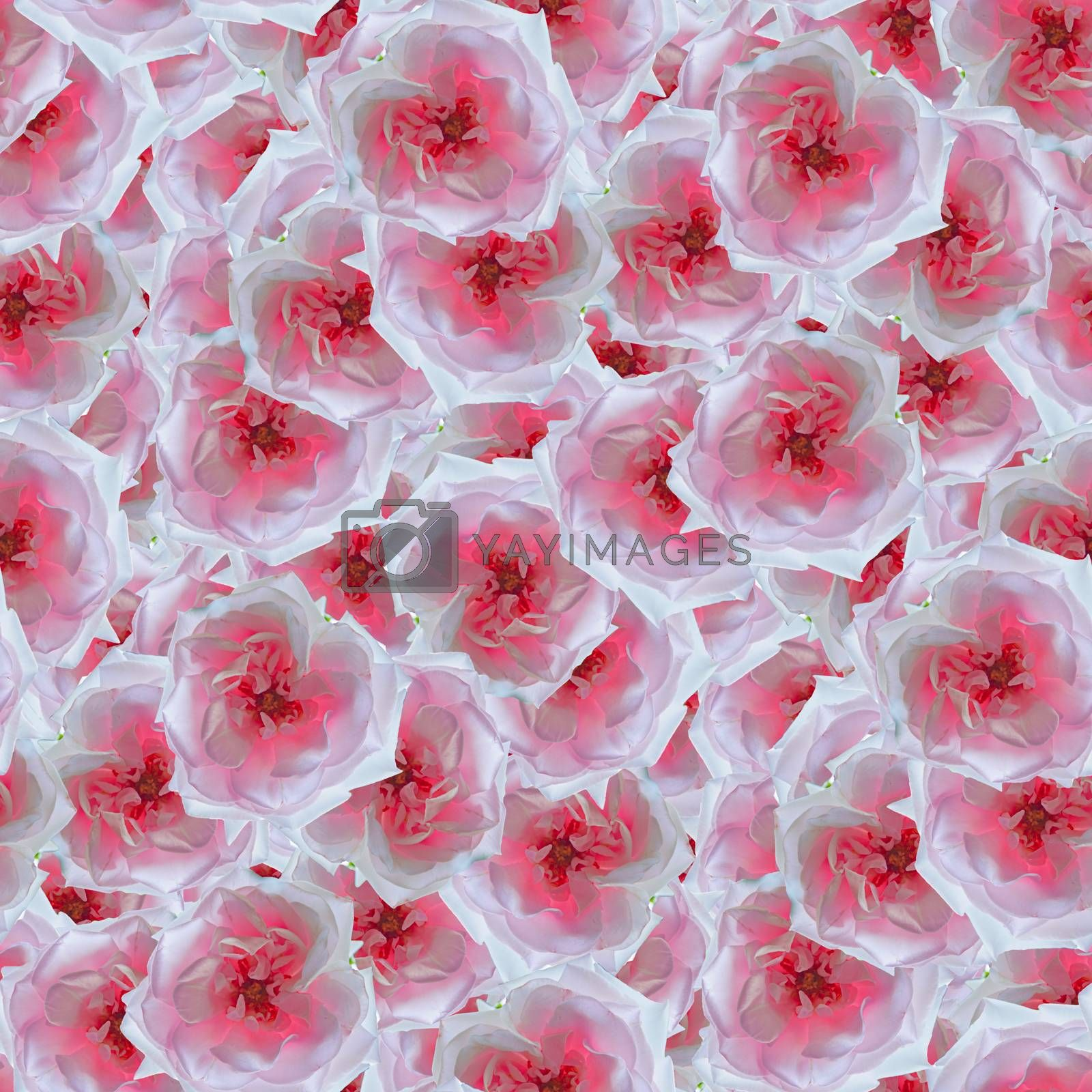 texture of a seamless flower pattern, decorative design elements