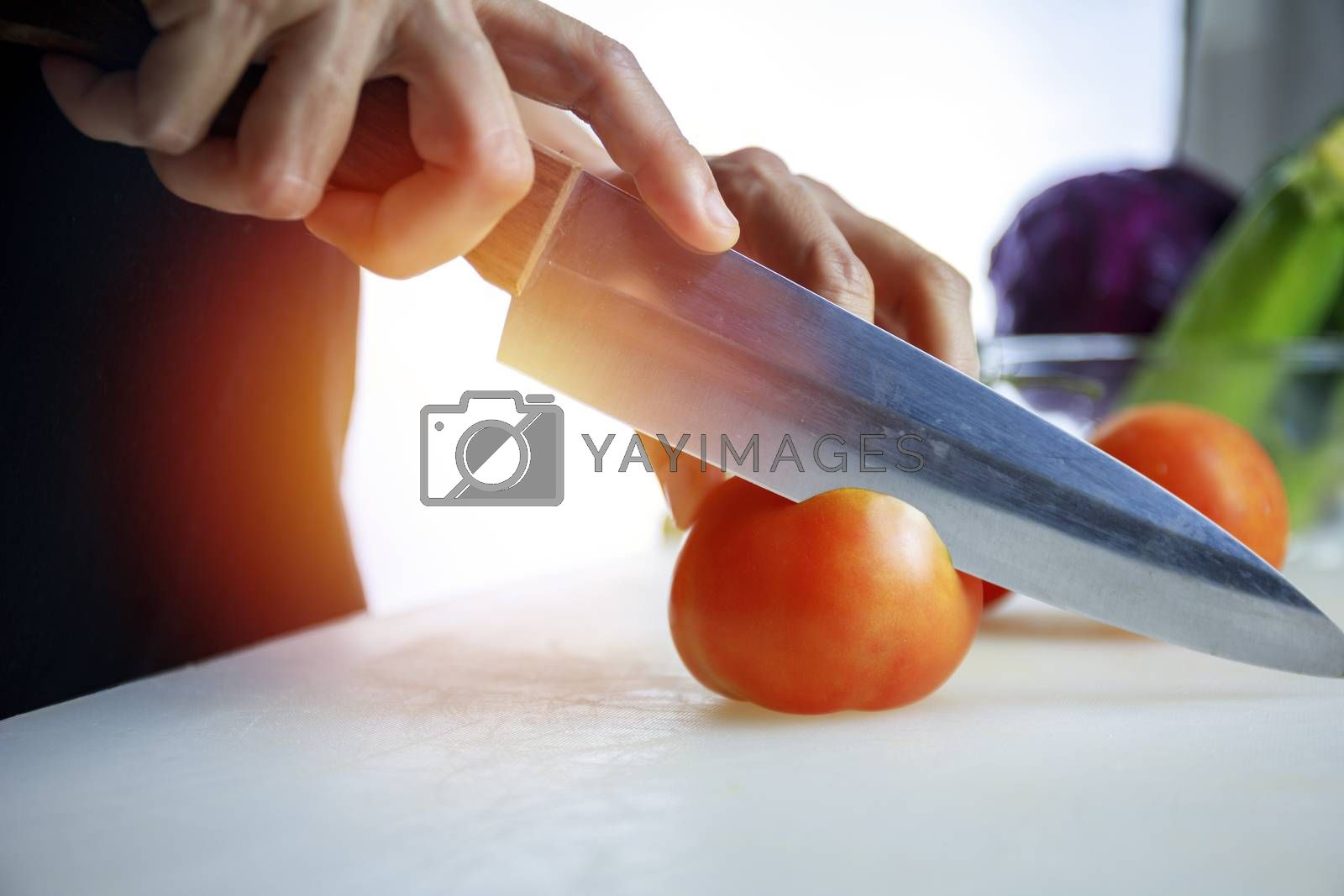 Close up hands women holding knife and cuting fresh Courgette on Cutting Board. Female hand slices raw Japanese Cucumber into circles with knife on cutting Board. healthy food concept..