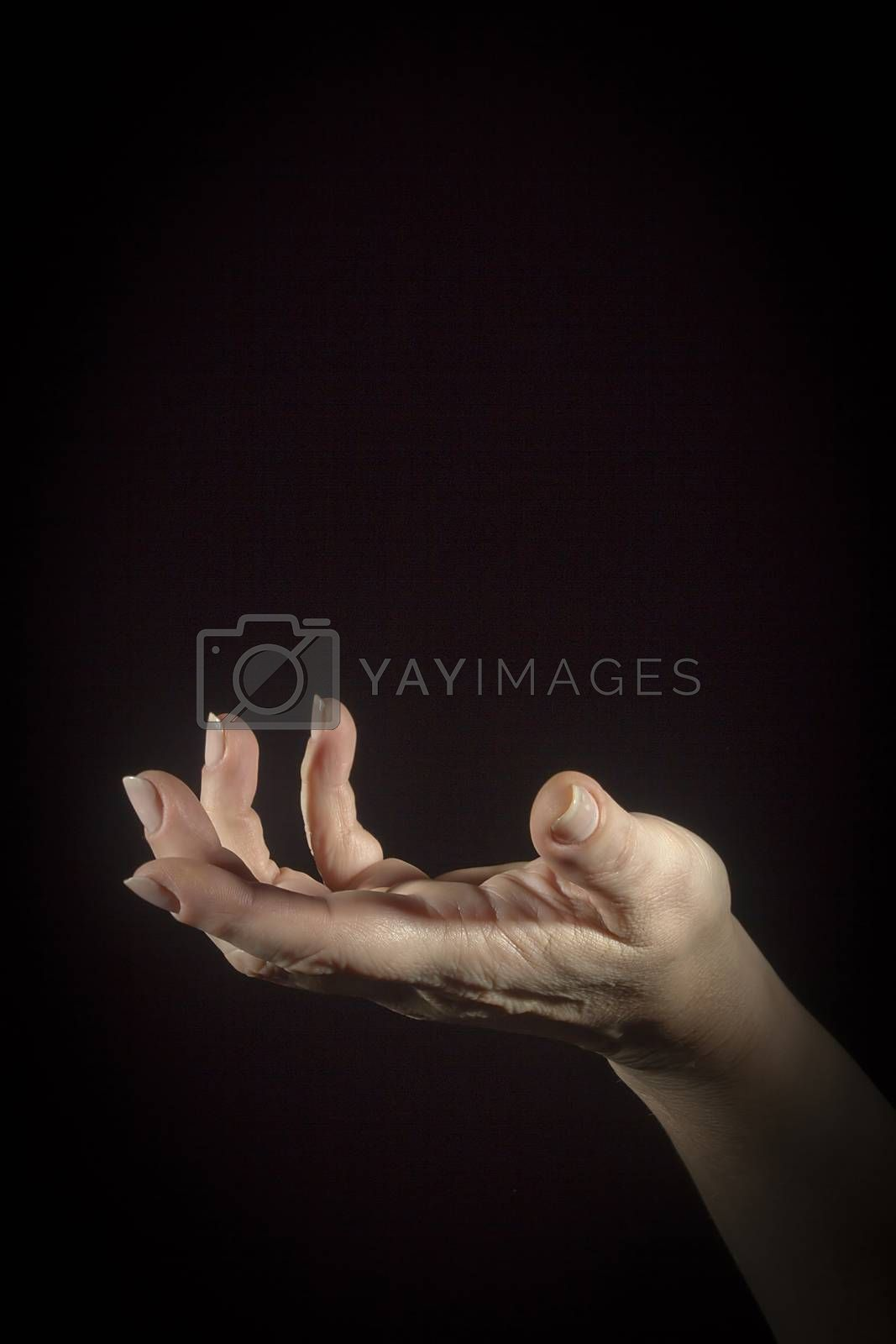 Female hand showing open gesture on black background