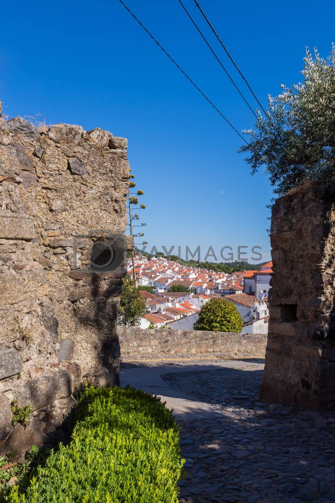 Royalty free image of Castelo de Vide by zittto