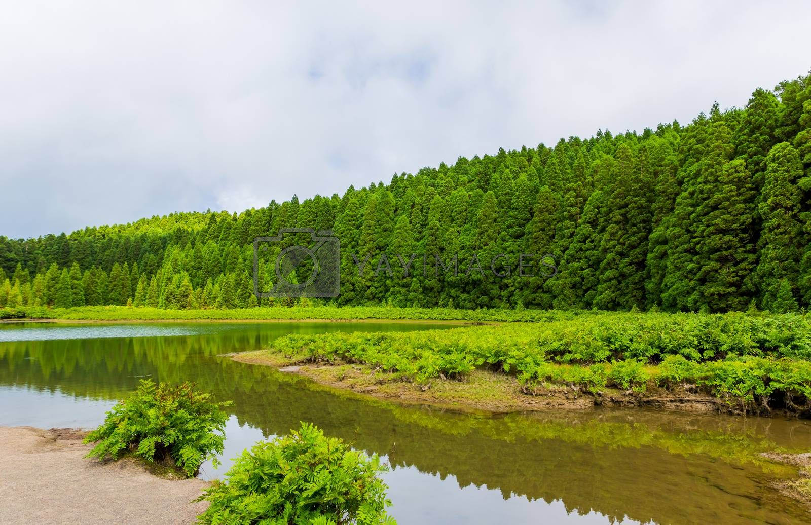 Royalty free image of Lagoa do Canario Azores by zittto