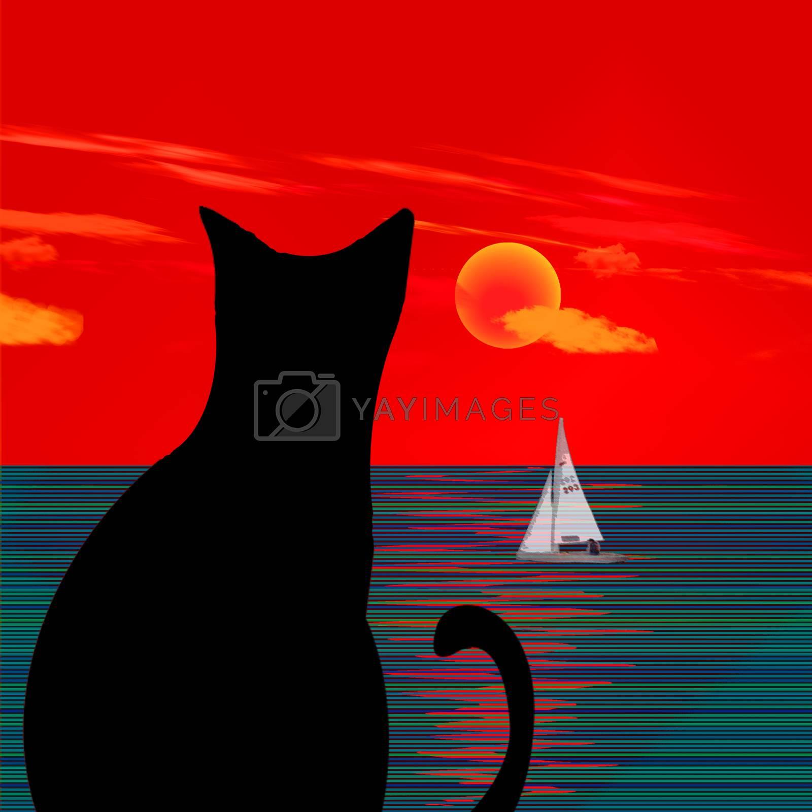 Black cat on ocean sunset. 3D rendering
