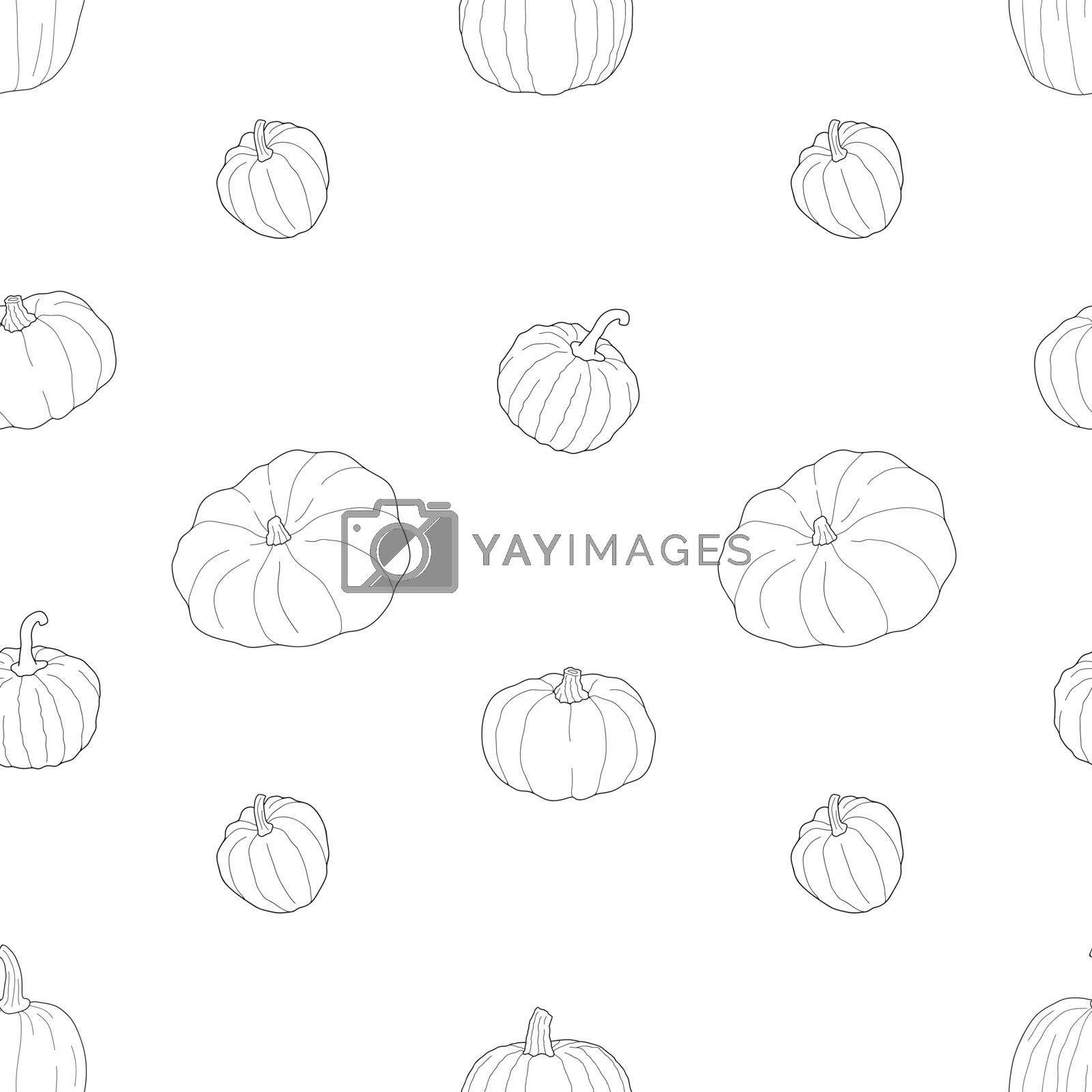 Pumpkin transparent seamless pattern. Vector illustration isolated on white background. Healthy vegetarian food. Doodle style. Decoration for greeting cards, posters, patches, prints for clothes, emblems.