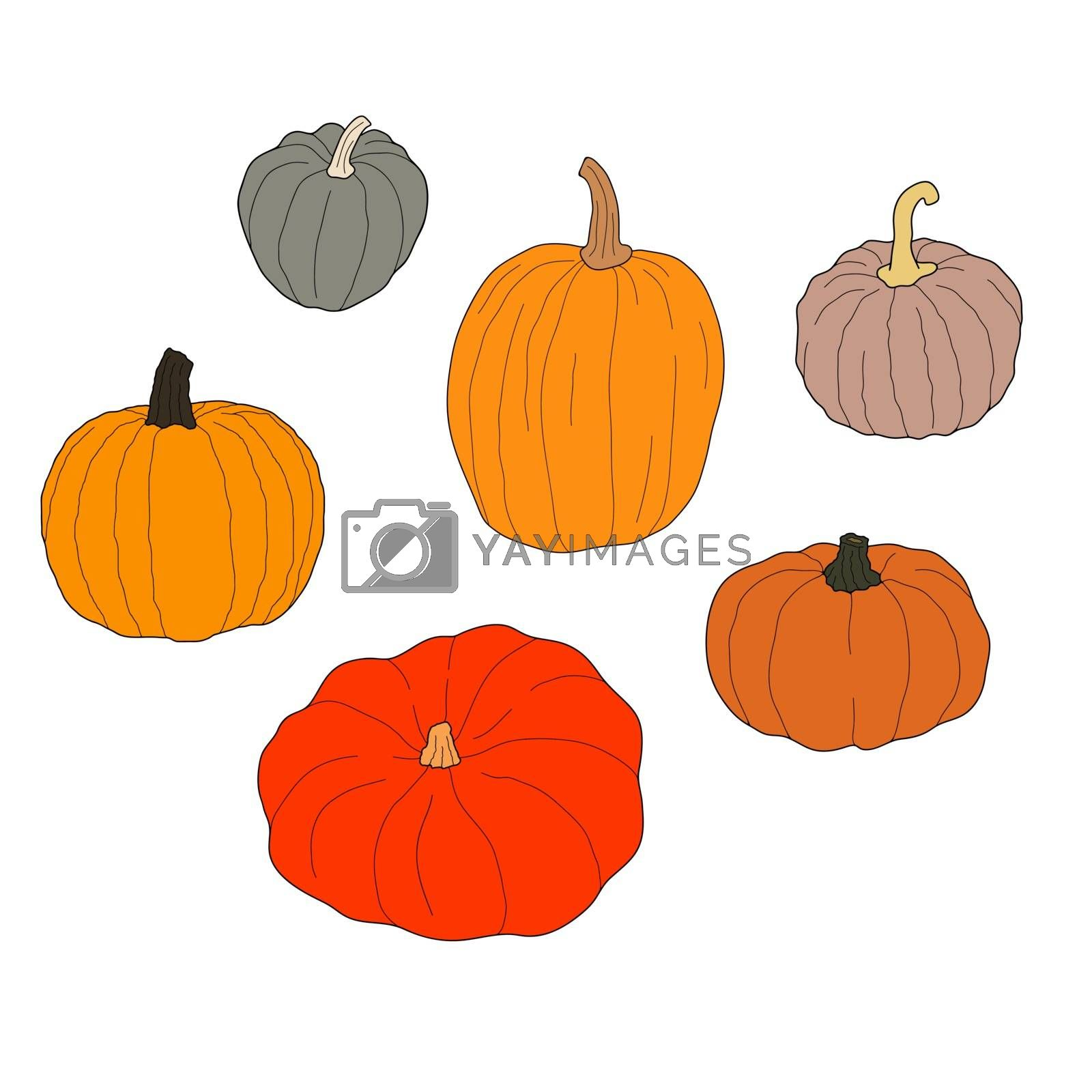 Pumpkin colorful set vector illustration isolated on white background. Healthy vegetarian food. Doodle style. Decoration for greeting cards, posters, patches, prints for clothes, emblems.