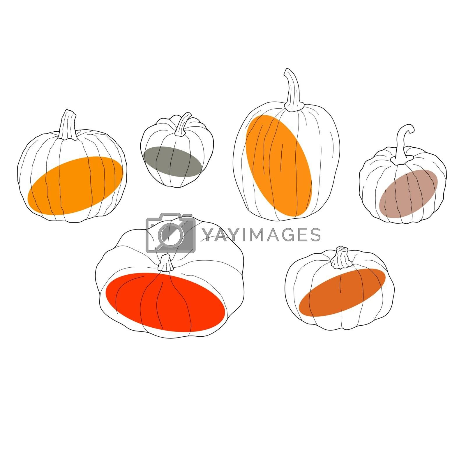 Pumpkin transparent set. Vector illustration isolated on white background. Healthy vegetarian food. Doodle style. Decoration for greeting cards, posters, patches, prints for clothes, emblems.