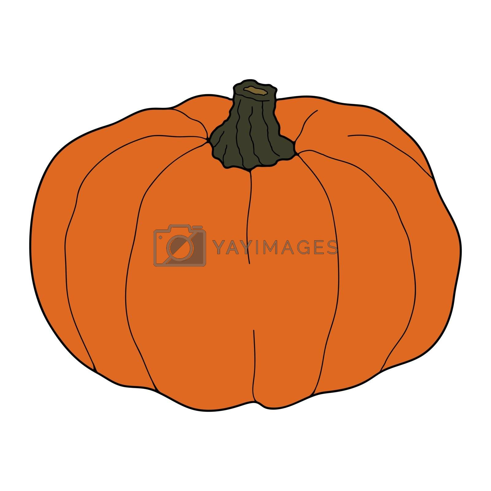 Pumpkin colorful vector illustration isolated on white background. Healthy vegetarian food. Doodle style. Decoration for greeting cards, posters, patches, prints for clothes, emblems.
