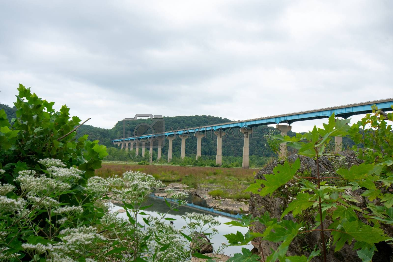 Looking in-between plants and rocks at The Norman Wood Bridge Over the Susquehanna River on a Cloudy Overcast Sky