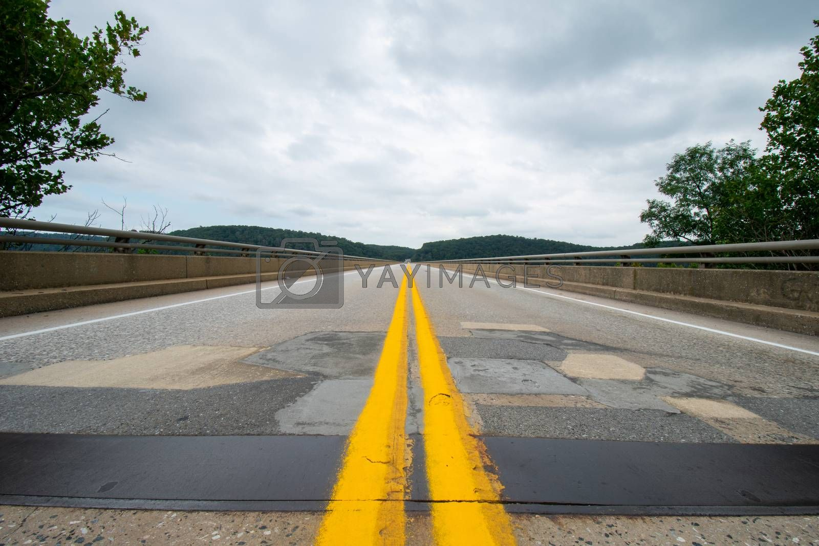 A Low-Angle Shot From the Middle of the Road at the Norman Wood Bridge