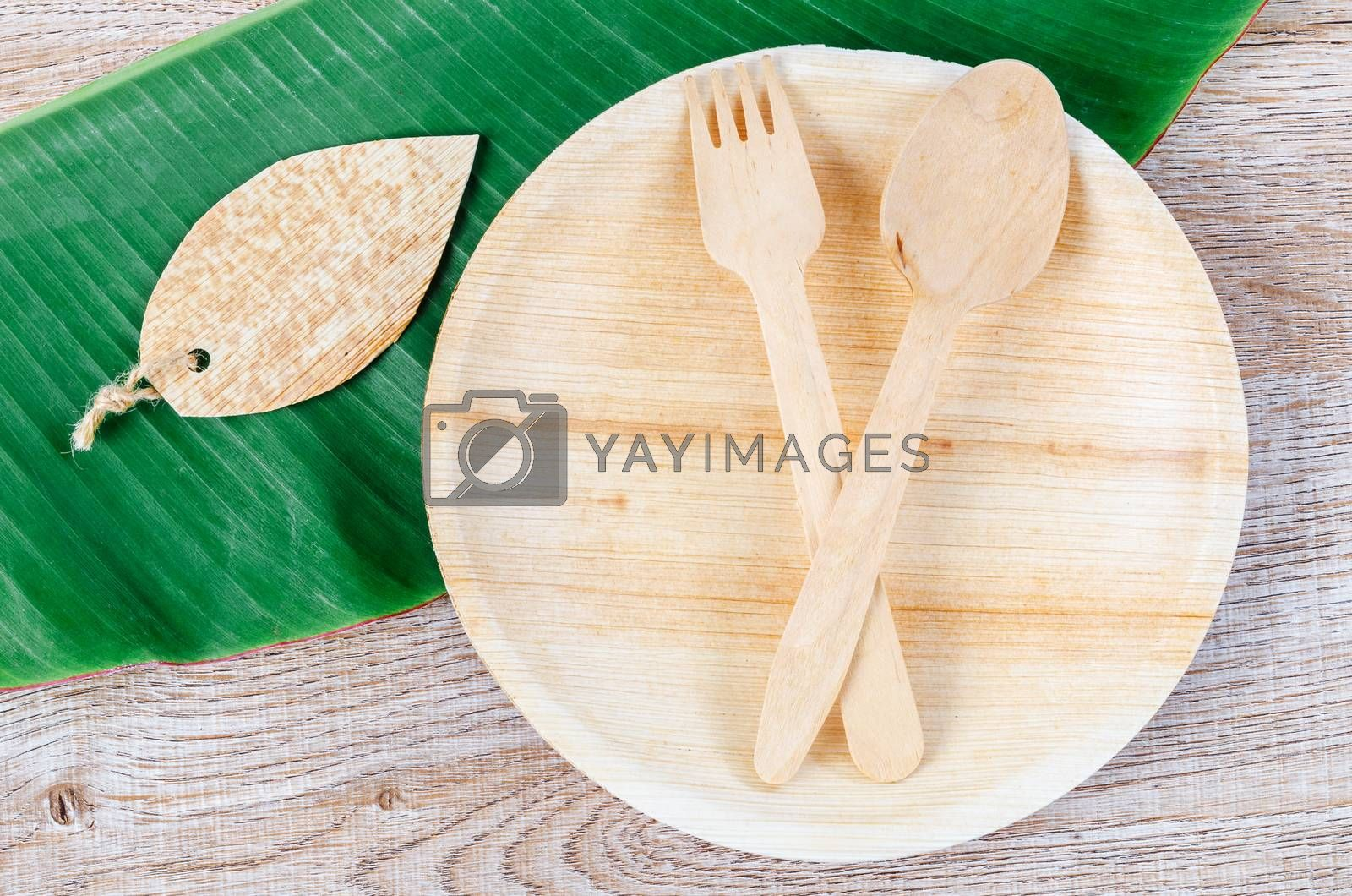Kitchenware made from dried betel nut leaf palm, natural material. The Green product eco friendly concept.