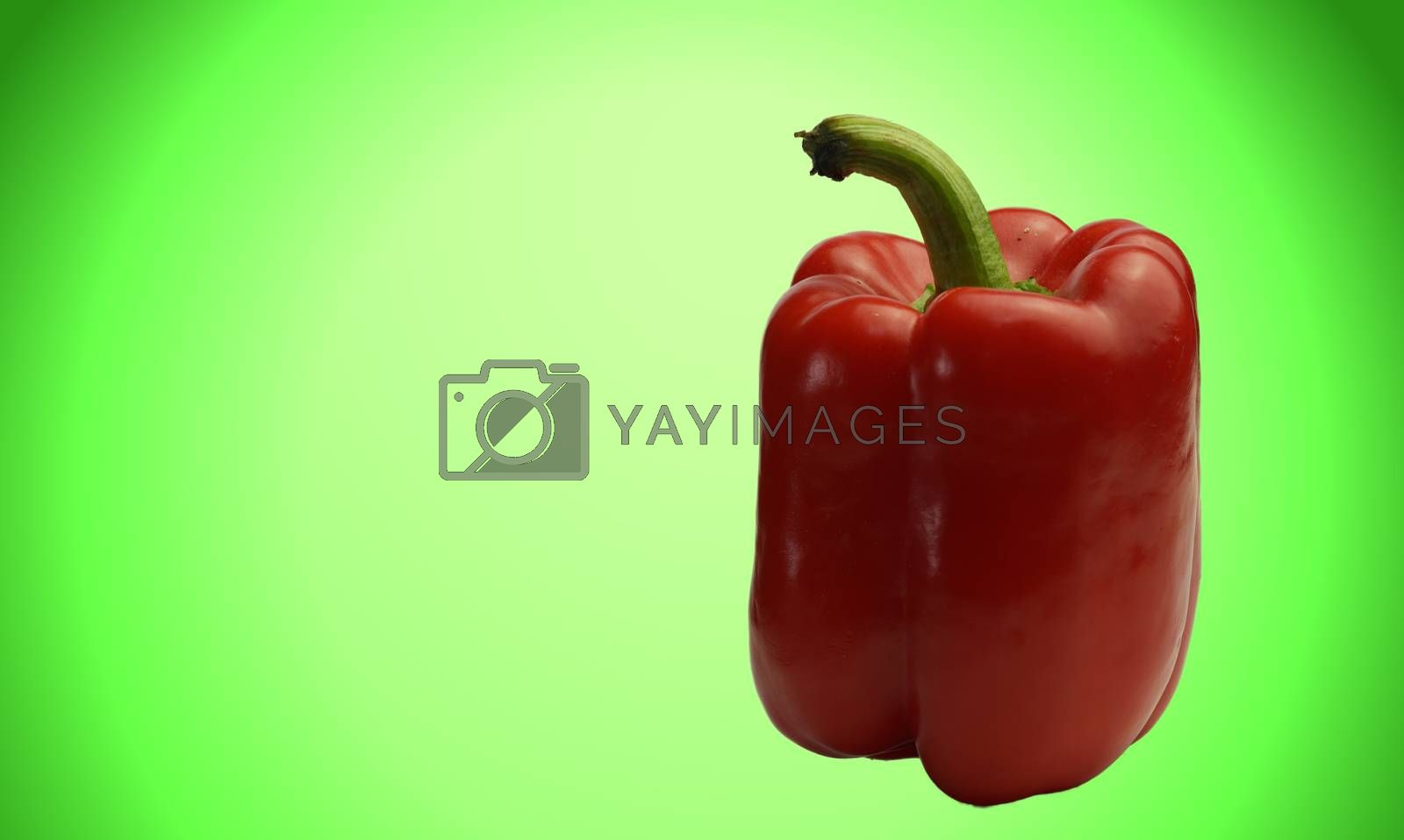 Separate red chili with colorful green background with text space.