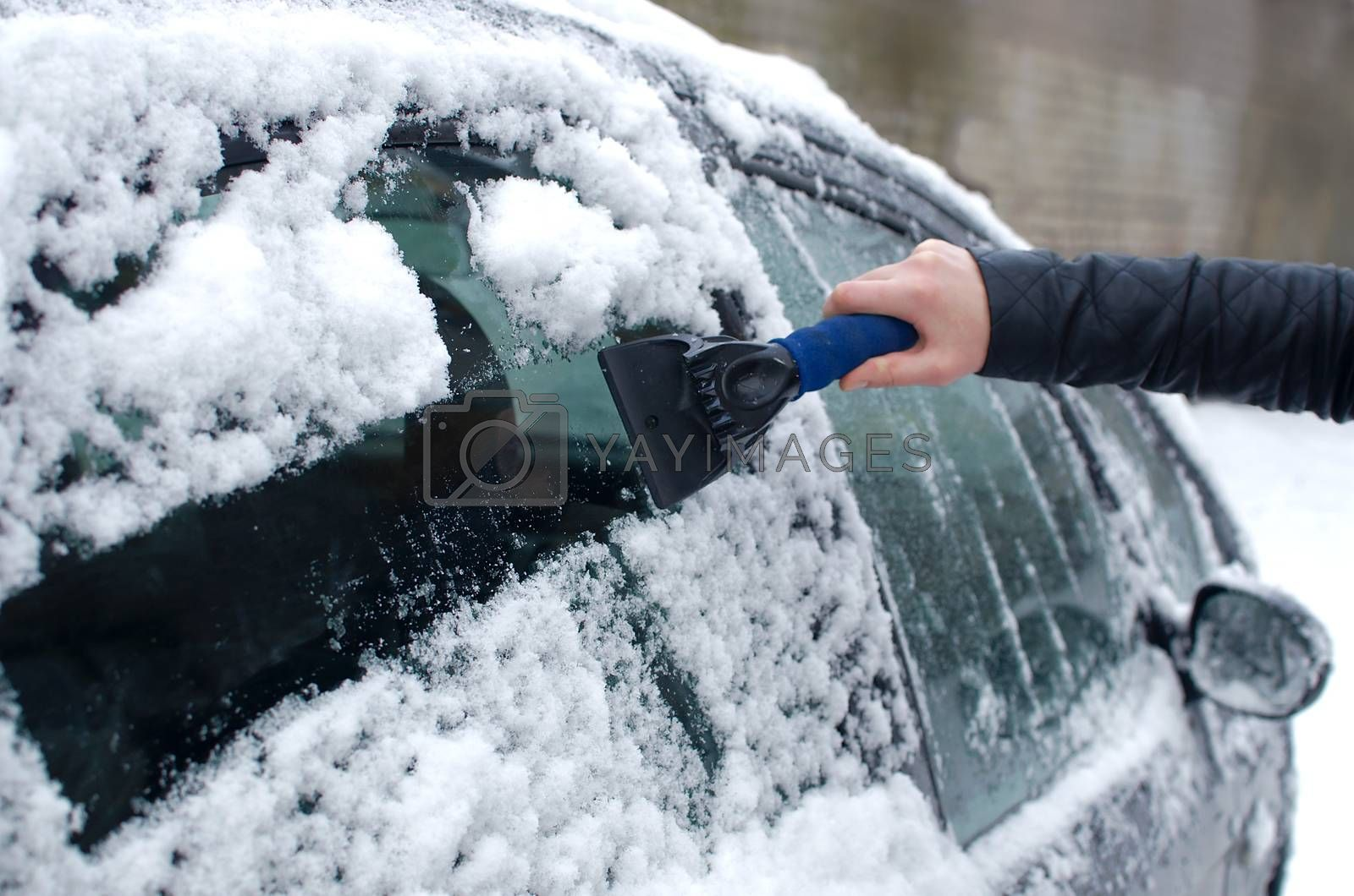 Cleaning snow from windshield. Winter vehicle front windows clean. Woman scraping ice from the windshield of a car. Winter driving. Woman removing snow from automobile. Cold snowy and frosty morning.