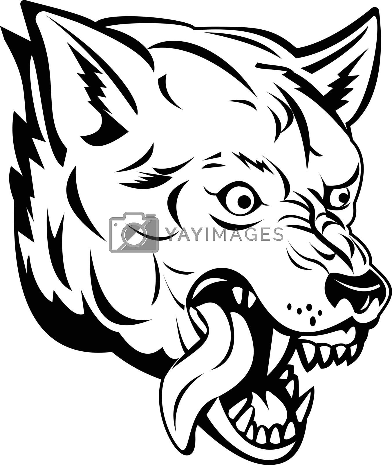 Sports mascot illustration of head of an aggressive and angry wolf, canis lupus, gray wolf or grey wolf, a large canine native to Eurasia and North America side view in black and white retro style.