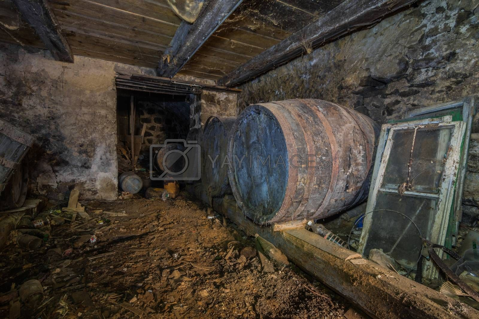stored barrels in a cellar of a house