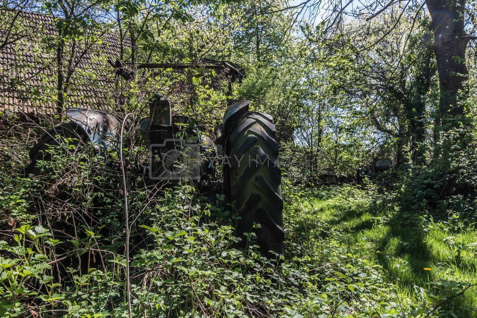 old overgrown tractor from behind at a farm
