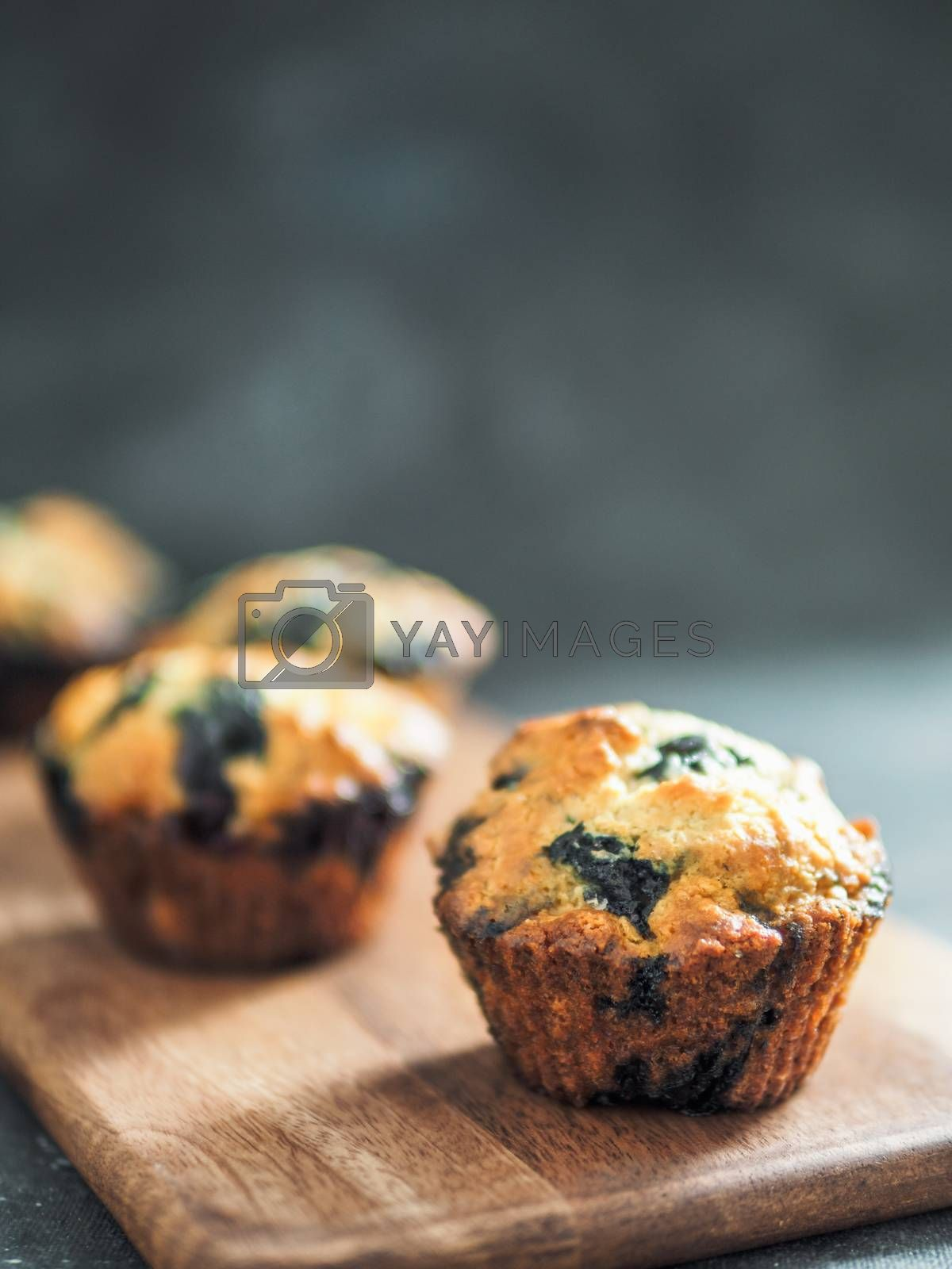 Homemade vegan blueberry muffins on dark background. Copy space for text or design