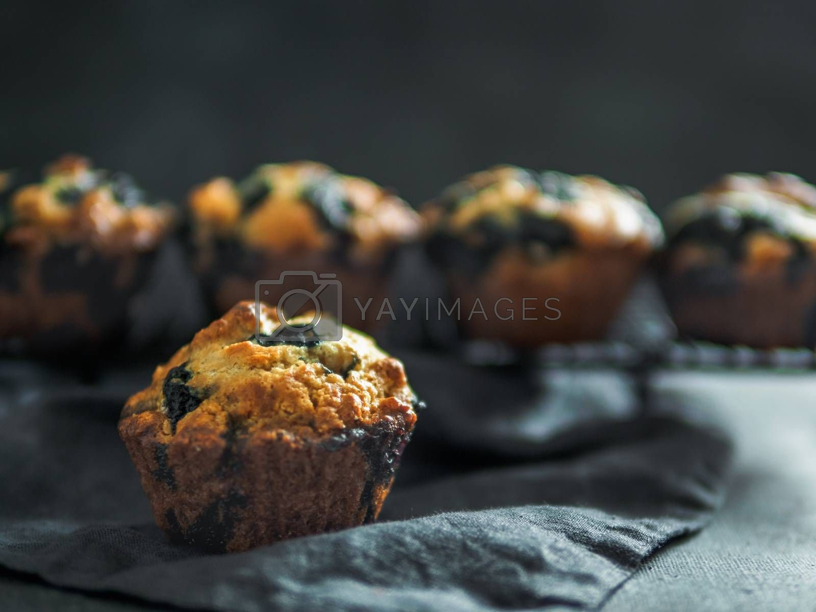 Homemade vegan blueberry muffins on dark background. Copy space for text or design. Low key