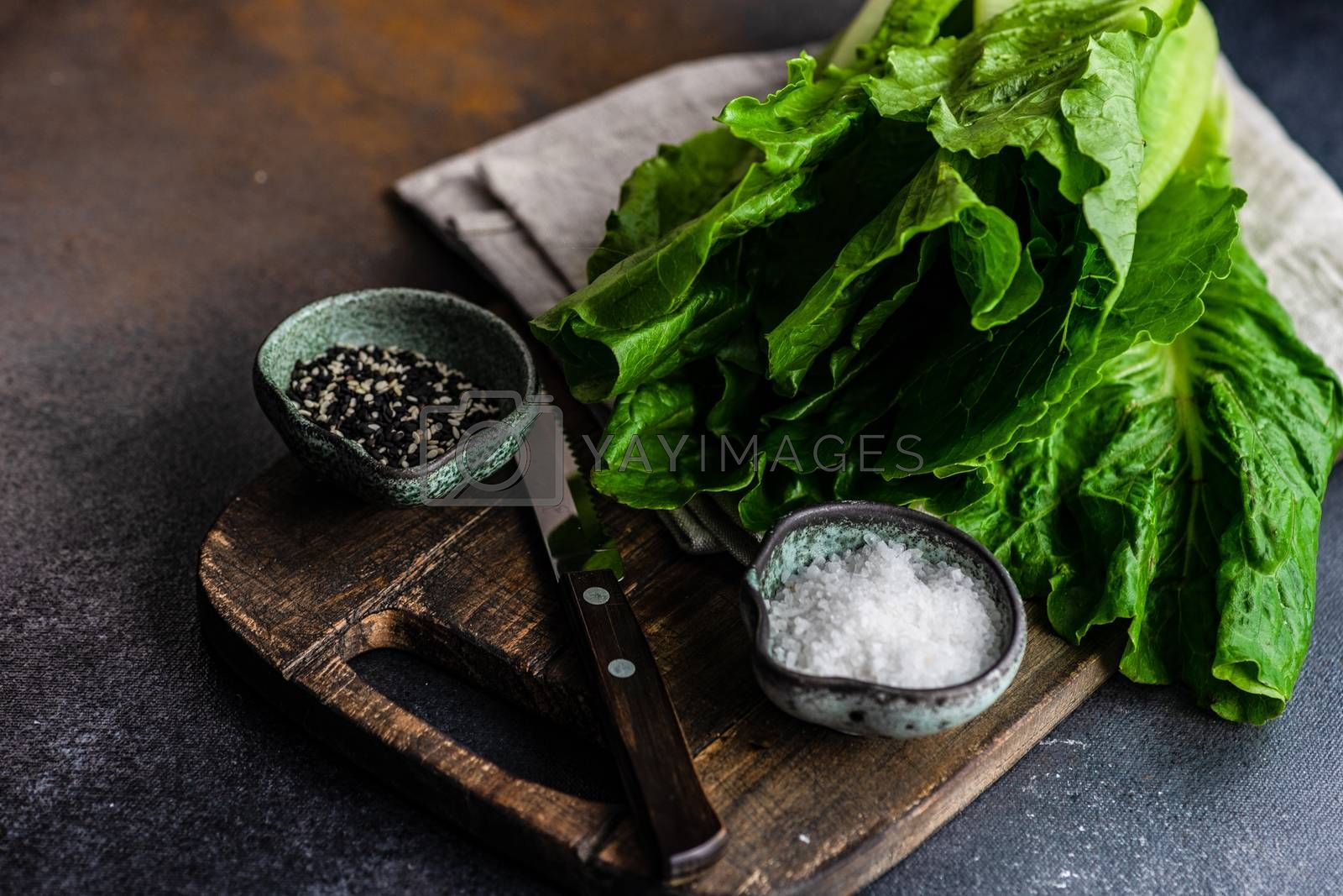 Raw and organic salad cooking concept with fresh salad leaves andspices on rustic background with copy space