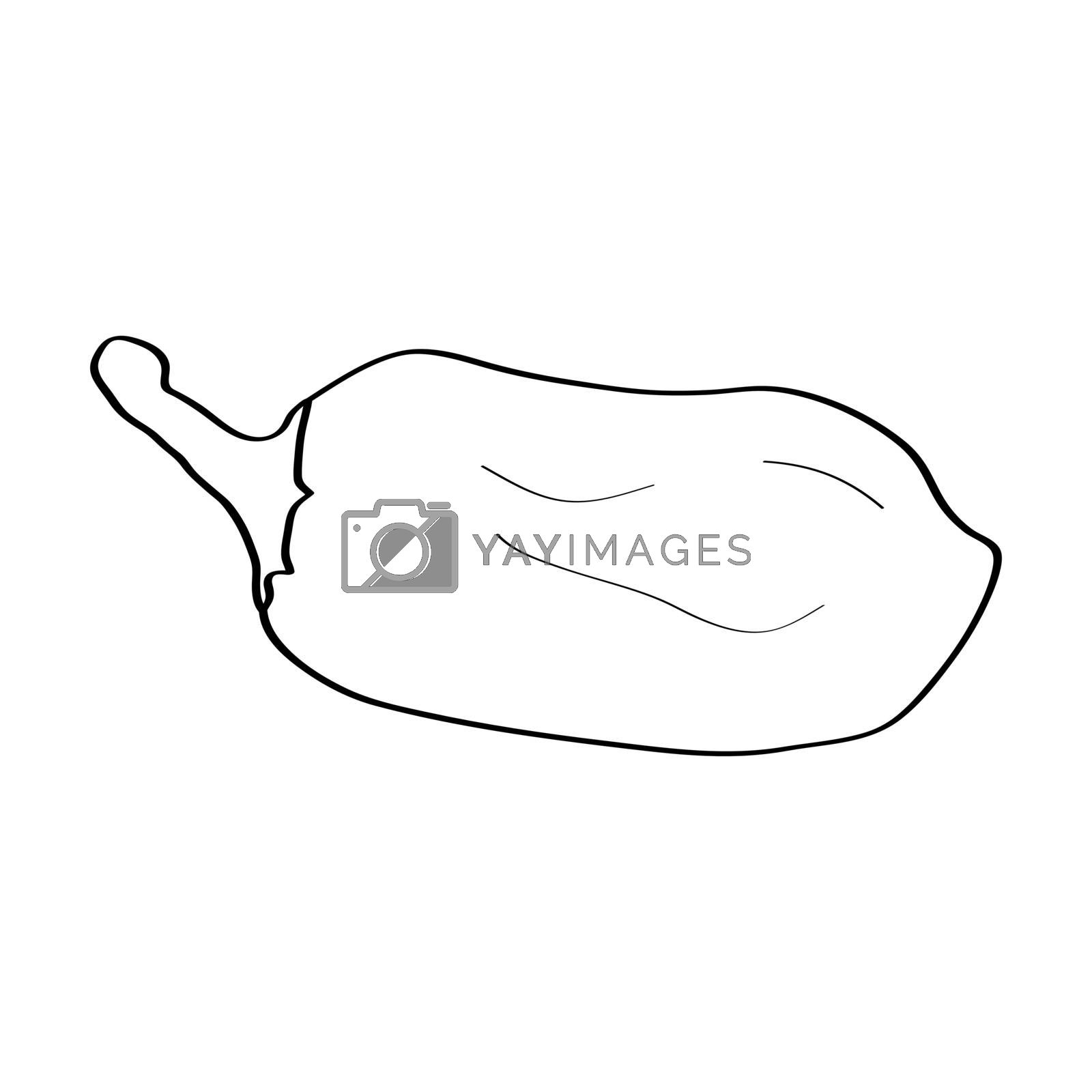Pepper. Hand drawn doodle icon. Vector black and white illustration isolated on white background. Decoration for greeting cards, posters, patches, prints for clothes, emblems.