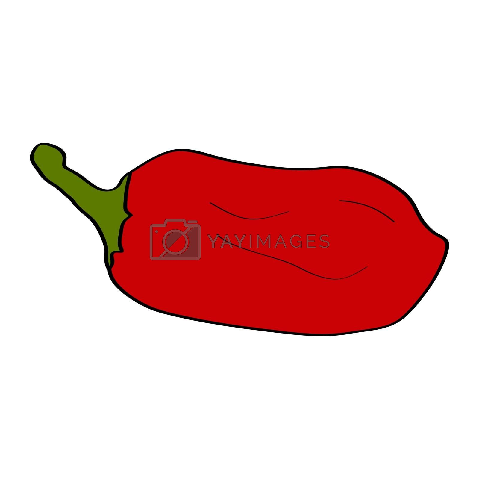 Pepper. Hand drawn doodle icon. Colorful vector illustration isolated on white background. Decoration for greeting cards, posters, patches, prints for clothes, emblems.