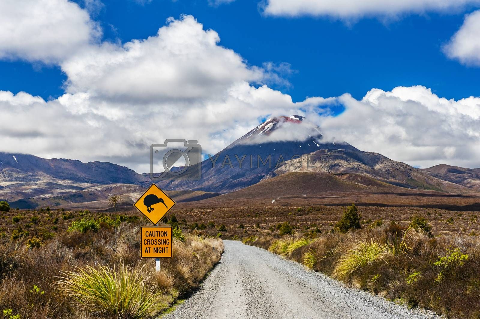 Kiwi sign near the road leading to famous volcano Mt. Ngauruhoe, national park Tongariro. New Zealand.