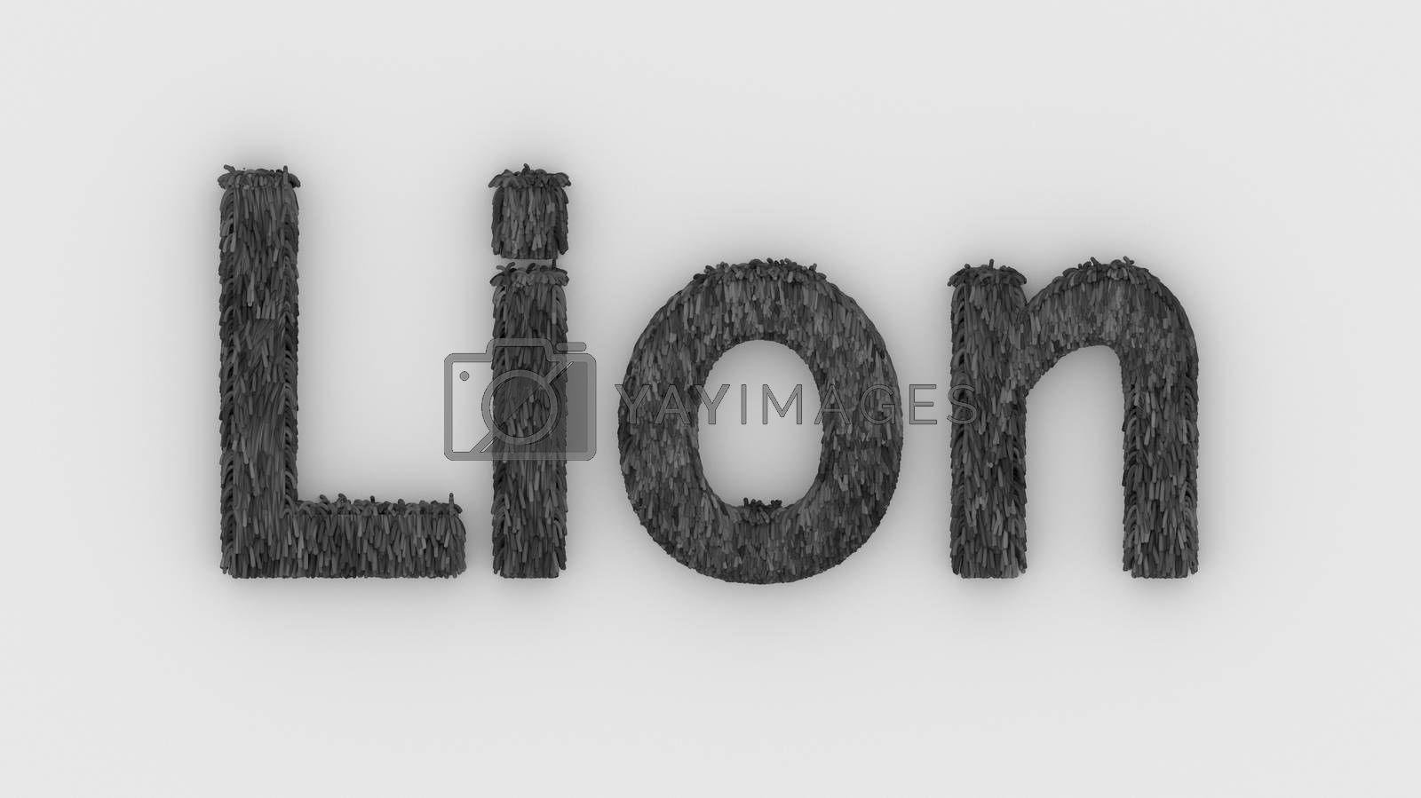 Lion - 3d word gray on white background. render furry letters. design template. African lion and night in Africa. African savannah landscape, king of animals.