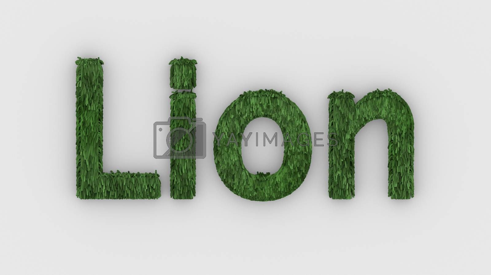 Lion - 3d word green on white background. render furry letters. design template. African lion and night in Africa. African savannah landscape, king of animals.