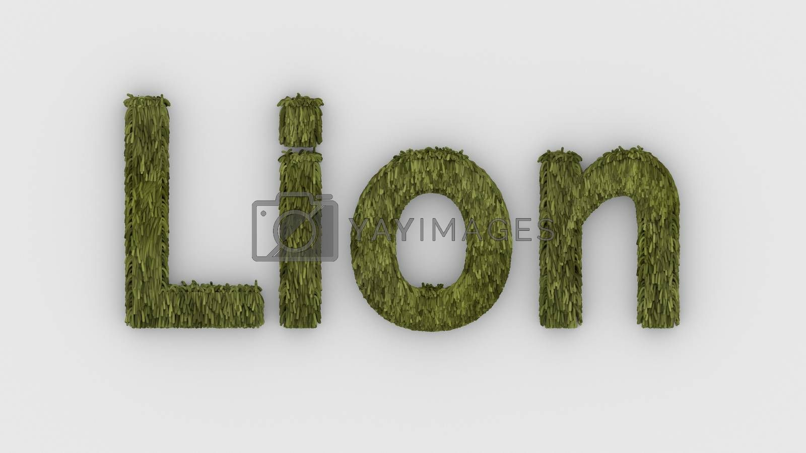 Lion - 3d word yellow on white background. render furry letters. design template. African lion and night in Africa. African savannah landscape, king of animals.
