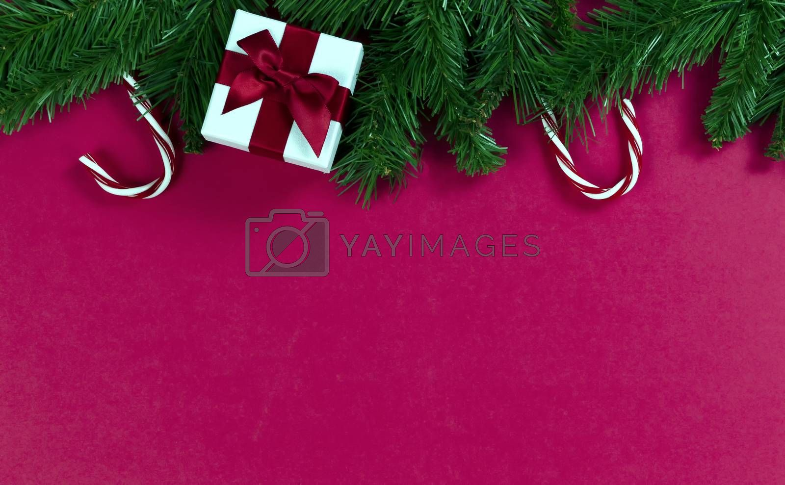 Merry Christmas and happy New Year on a red background with evergreen branches plus candy canes and gift box