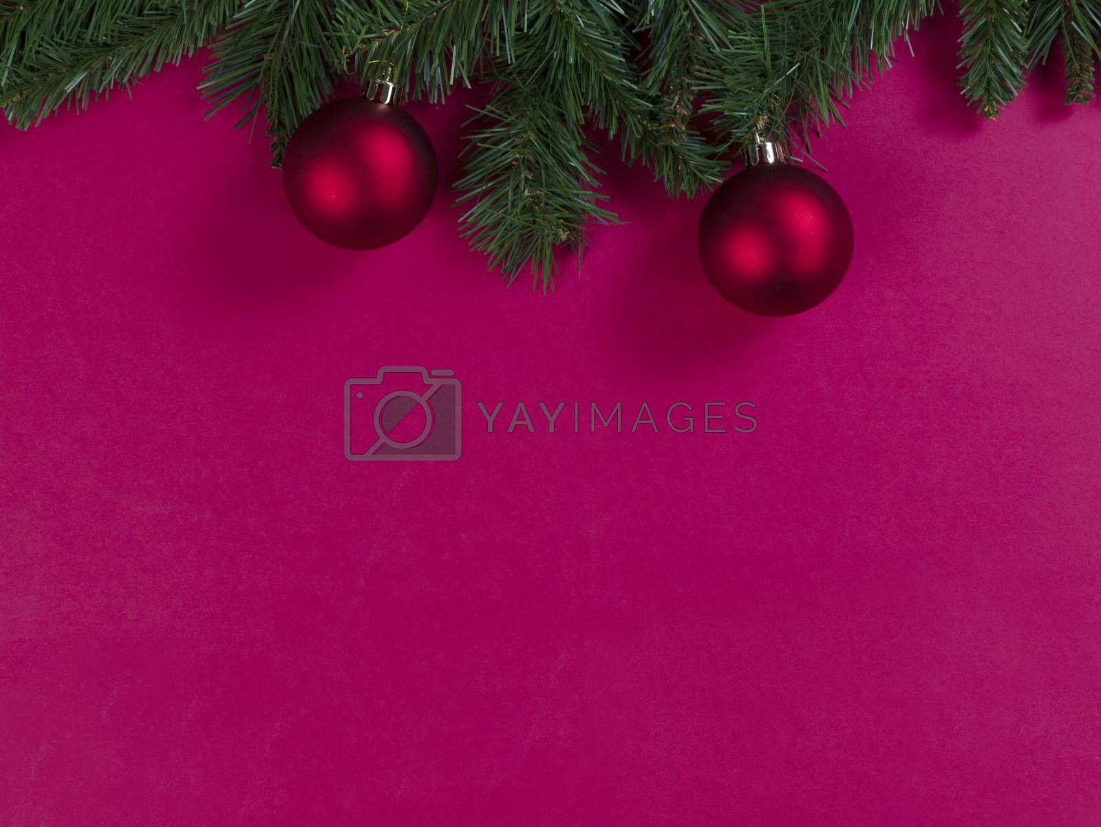 Merry Christmas and happy New Year on a red background with evergreen branches plus ball ornaments