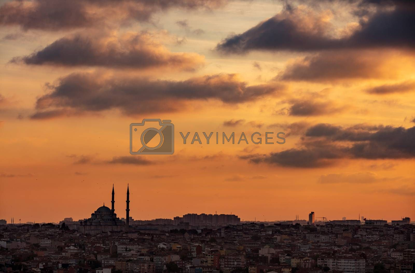Royalty free image of Beautiful Cityscape by Anna_Omelchenko