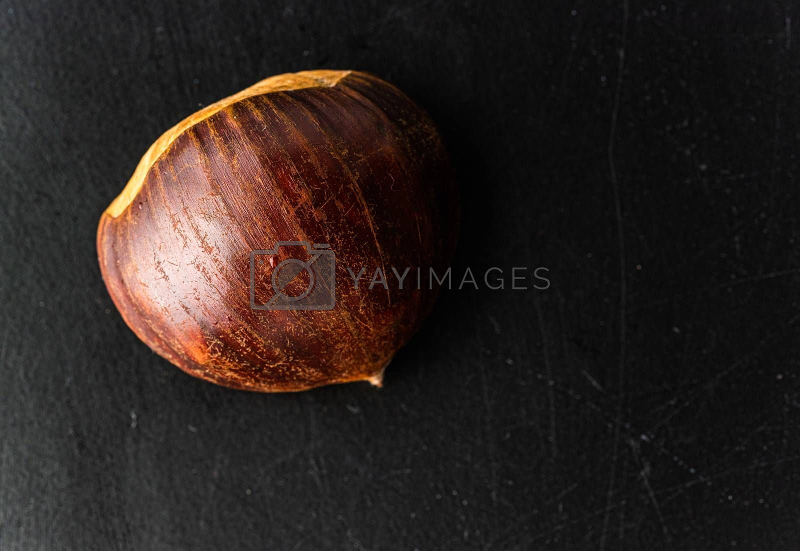 Fresh one chestnut isolated on black background. Copyspace top view closeup.