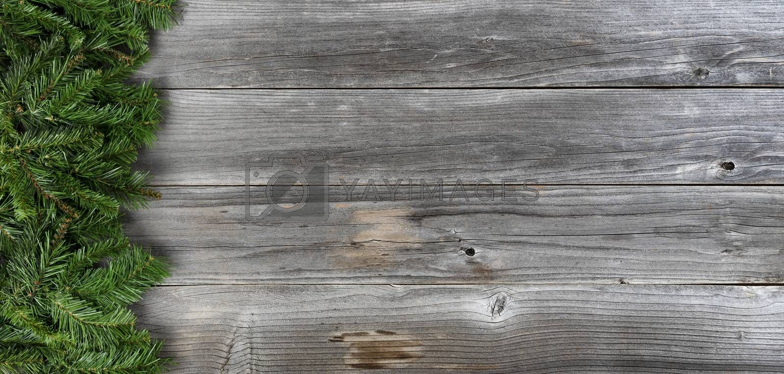 Merry Christmas and Happy New Year concept with fir branches on left side of rustic wooden boards