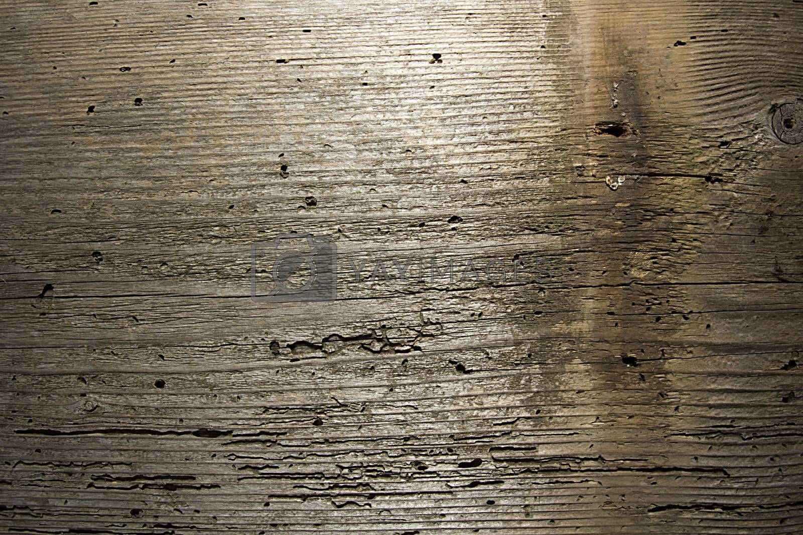 Old worn wooden board as a background