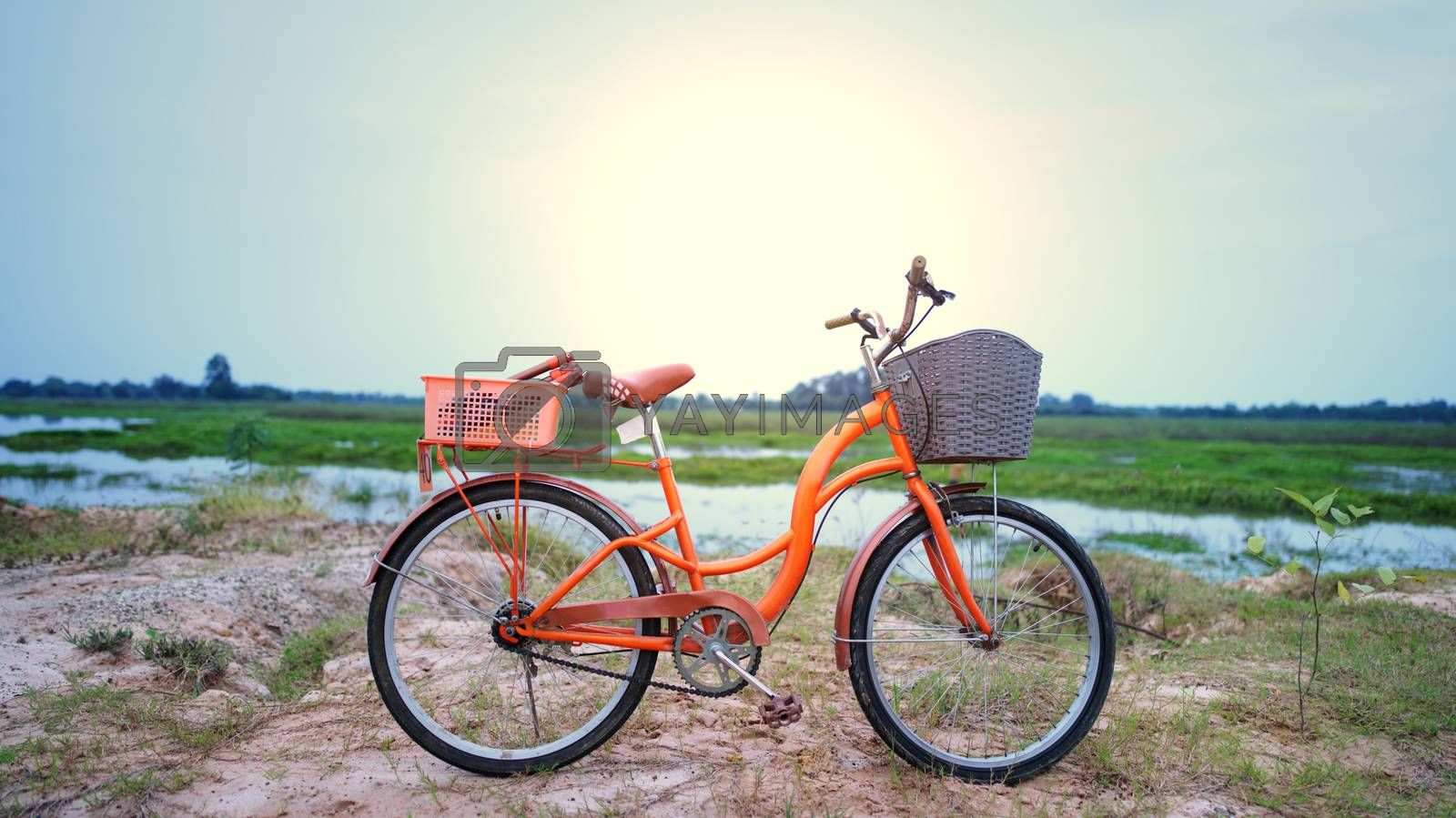 Royalty free image of An orange retro-style bicycle with a basket for luggage, parked by noppha80
