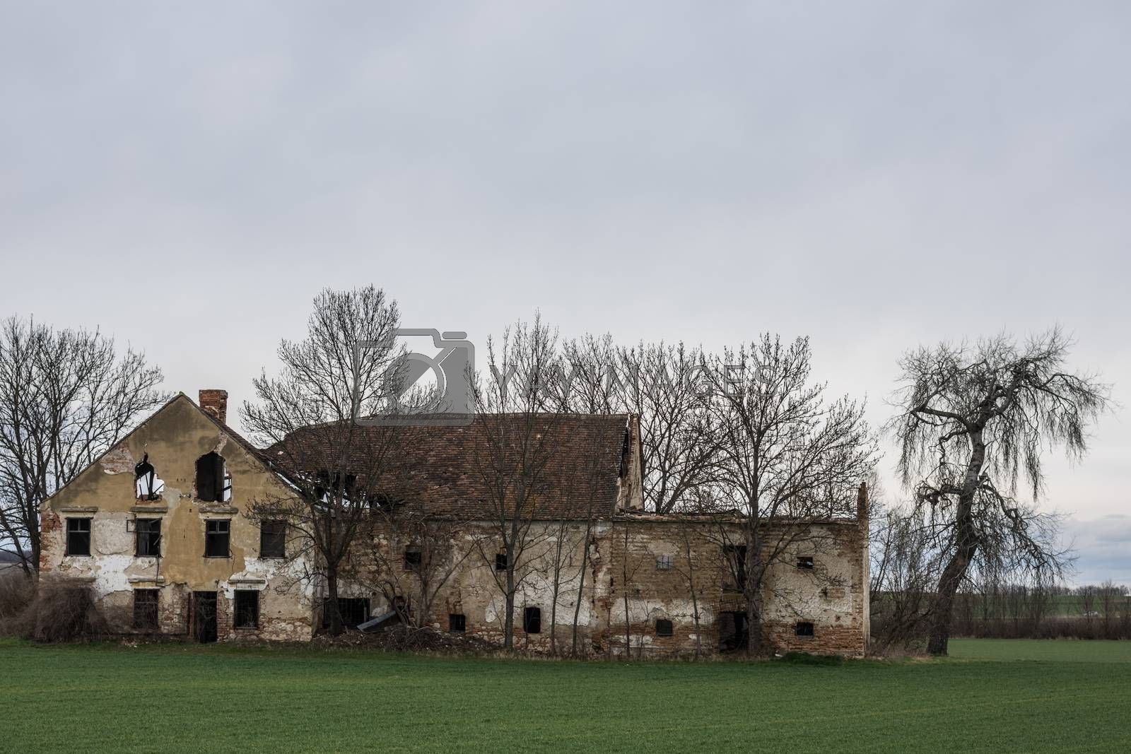 old abandoned mill and trees in the country