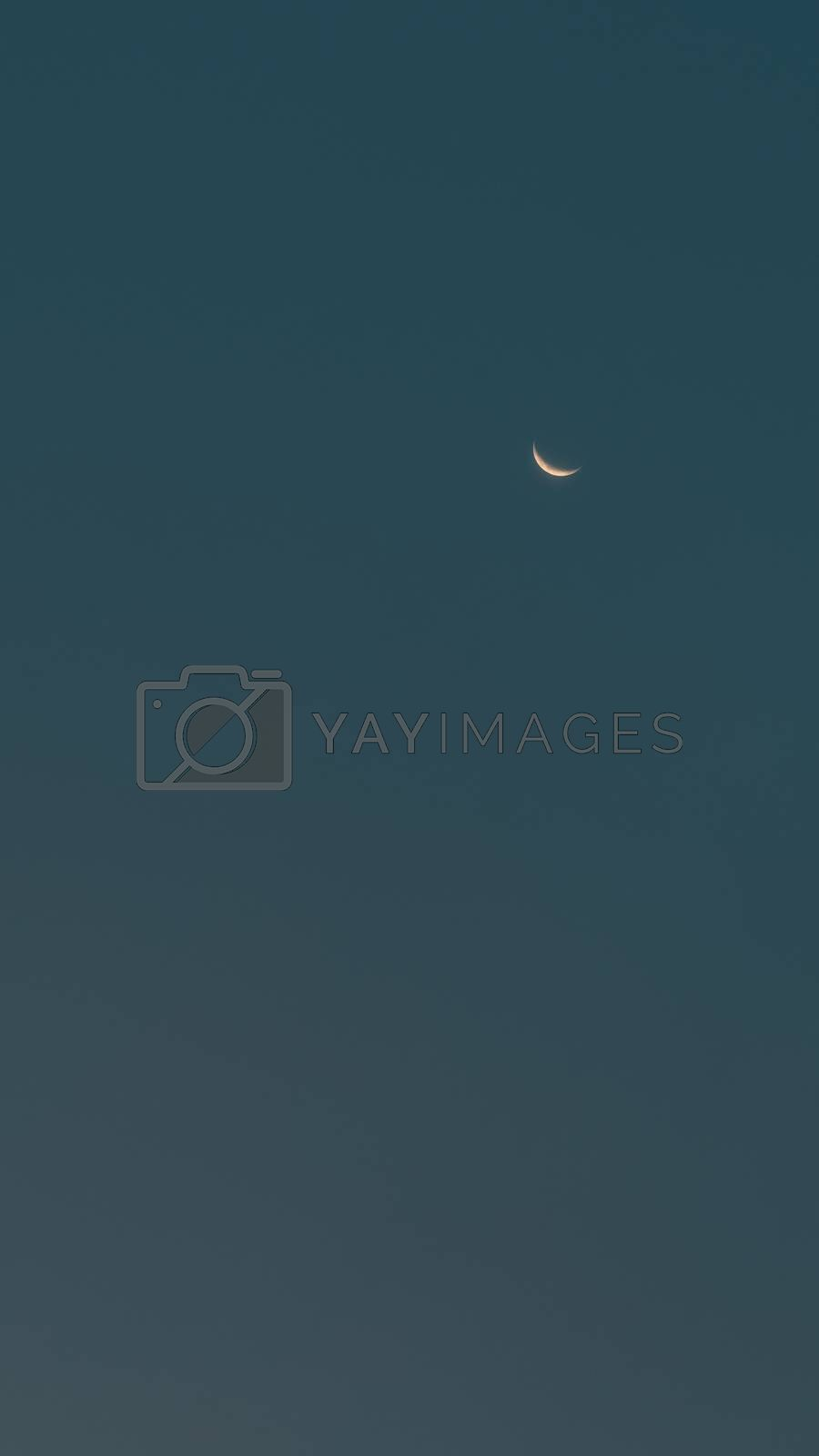 Vertical Panoramic View of a Night Sky with New Moon. Beauty of Nature. Halloween Background with Copy Space.