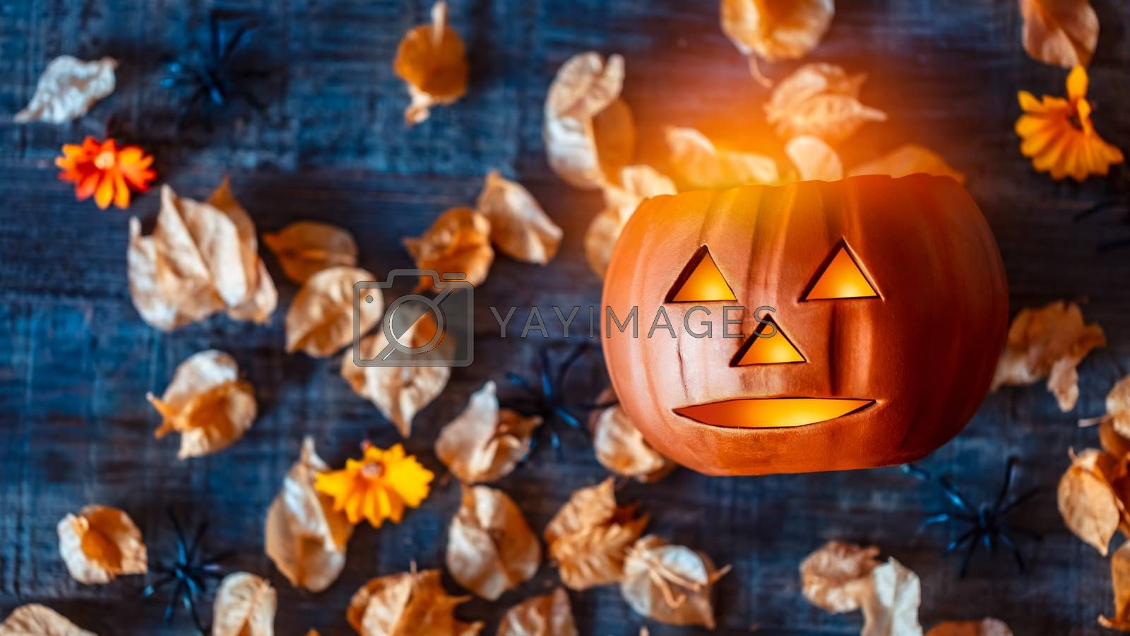 Carved Pumpkin as Jack-o-lantern with Grinning Face. Spooky Decoration for Halloween Party. Festive Still Life over Autumnal Leaves. Traditional American Holiday.