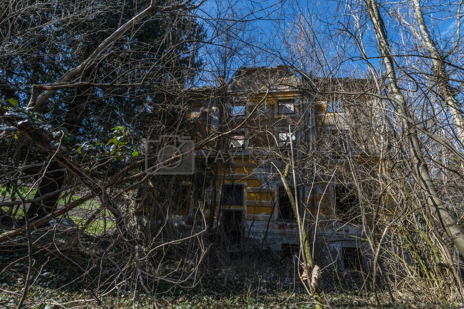Old dilapidated ruin of a yellow house in the forest