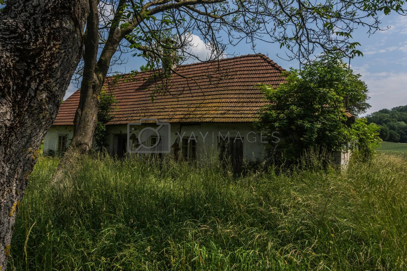Abandoned old house with tall grass in the countryside