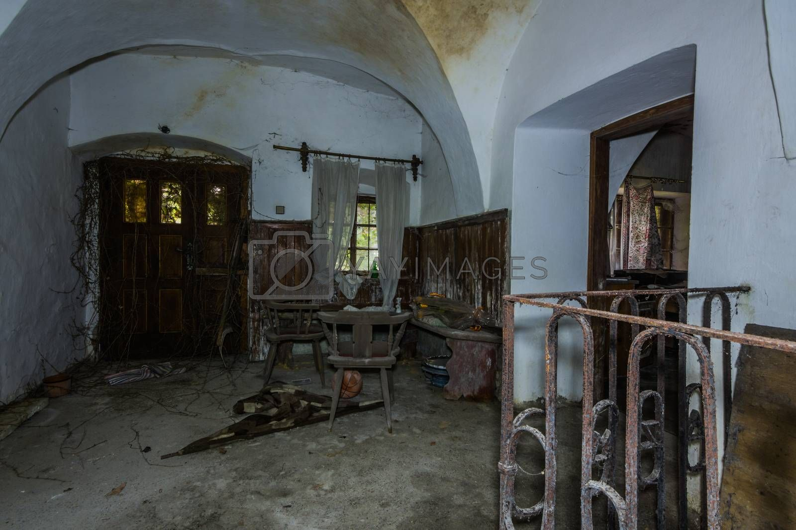overgrown anteroom in a mill with objects