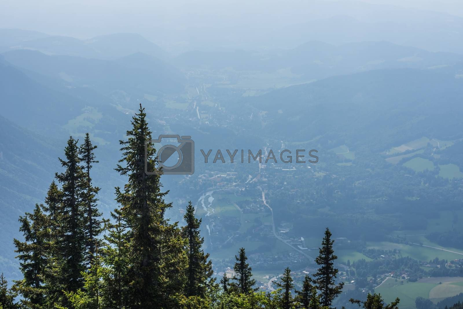view of the landscape with trees and mountain while hiking