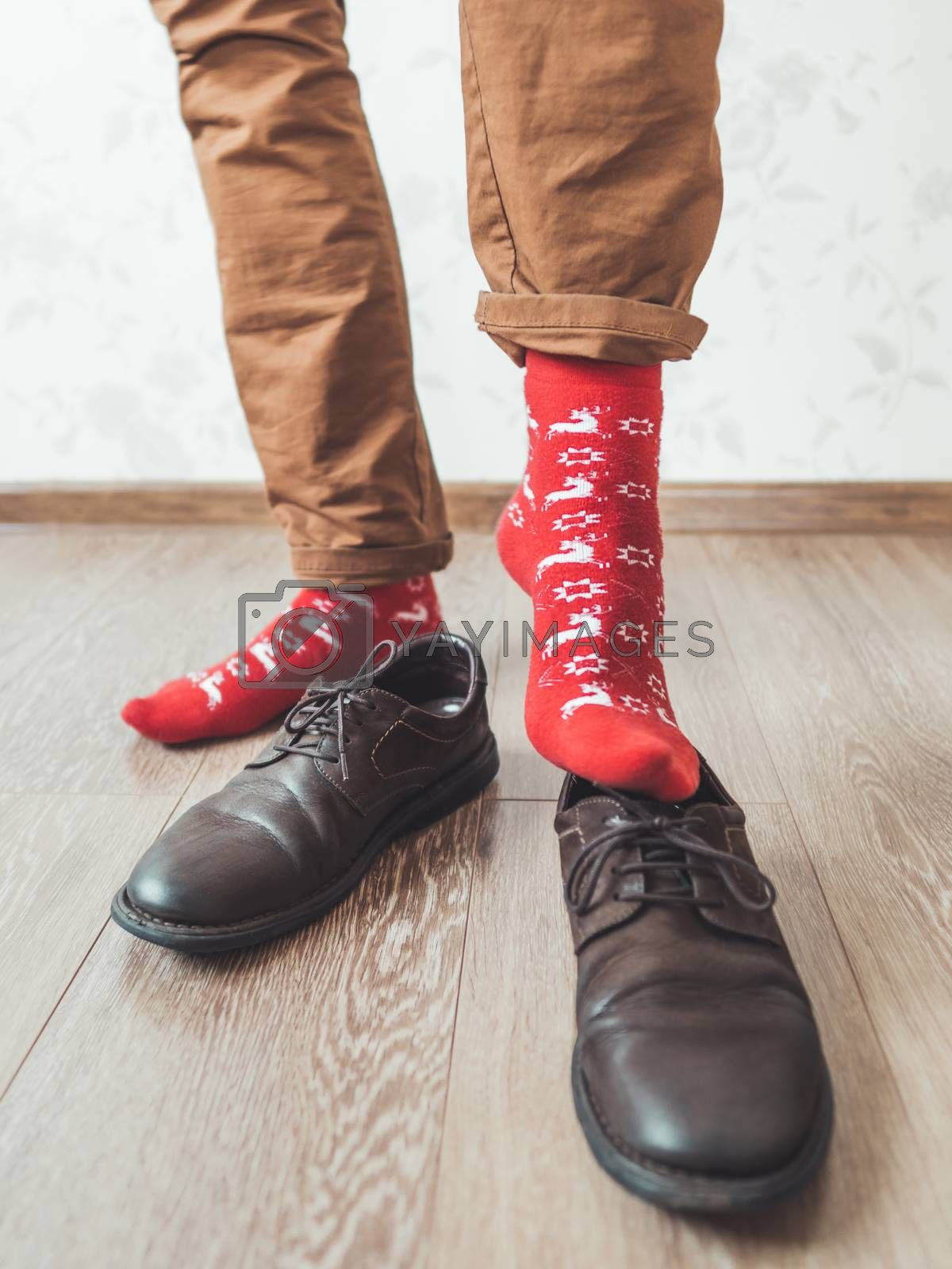 Royalty free image of Young man in chinos trousers and bright red socks with reindeers by aksenovko